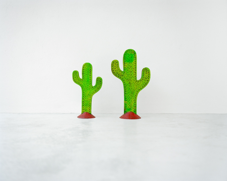 http://www.santiagoforero.com/files/gimgs/th-41_santiago-forero-story-about-friends-cacti.jpg